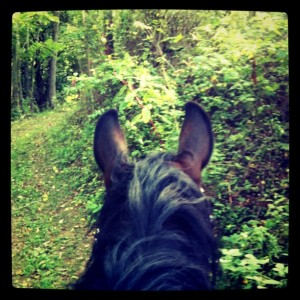 Trail riding with Rooie