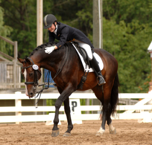 Routinier and Siobhan Byrne at Dressage at Lexington